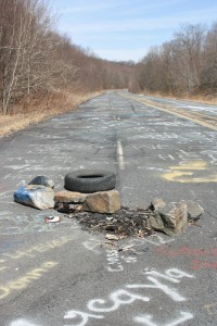Abandoned in 1993 after multiple repair attempts, Route 61 is an apocalyptic paradise.